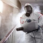 Services of Pest Control Companies